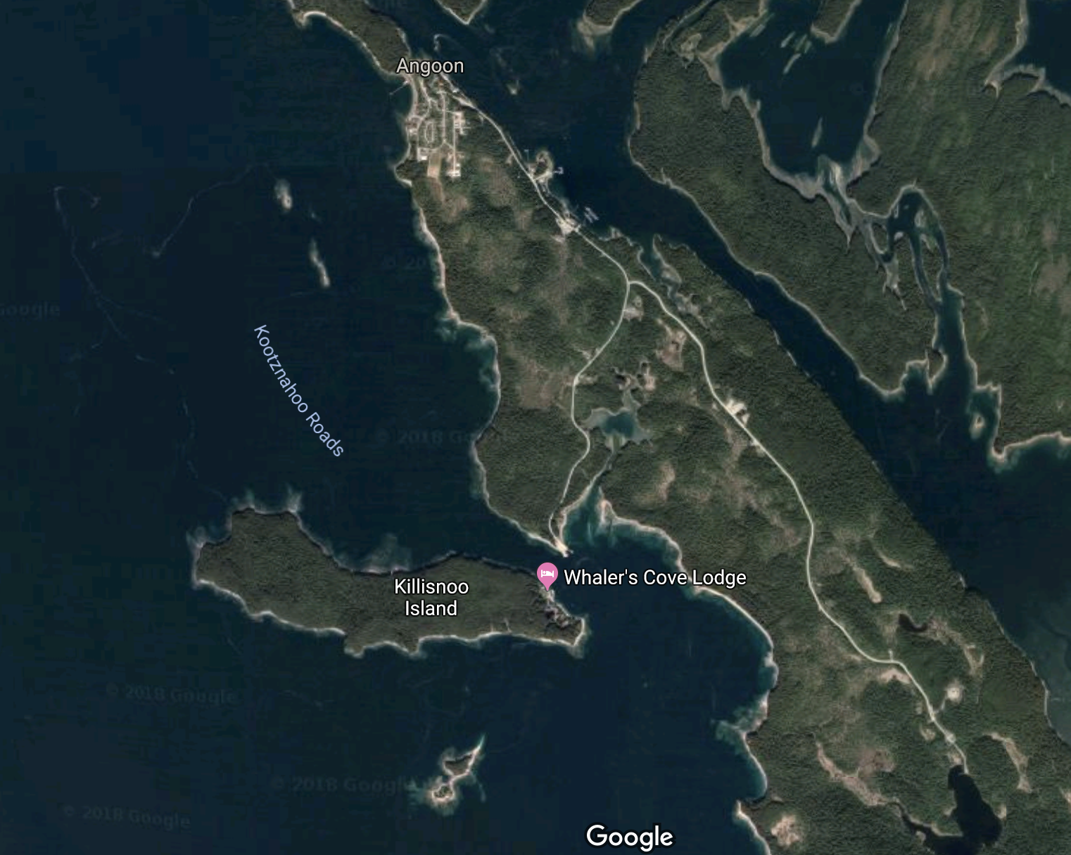 Google map of Angoon and Killisnoo Island, showing the settlements at night surrounded by woods and water